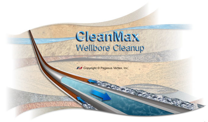 CleanMax - Wellbore Cleanup Software