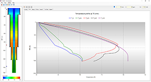 Temperature Profile | CTEMP Screenshot